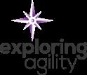 Exploring Agility